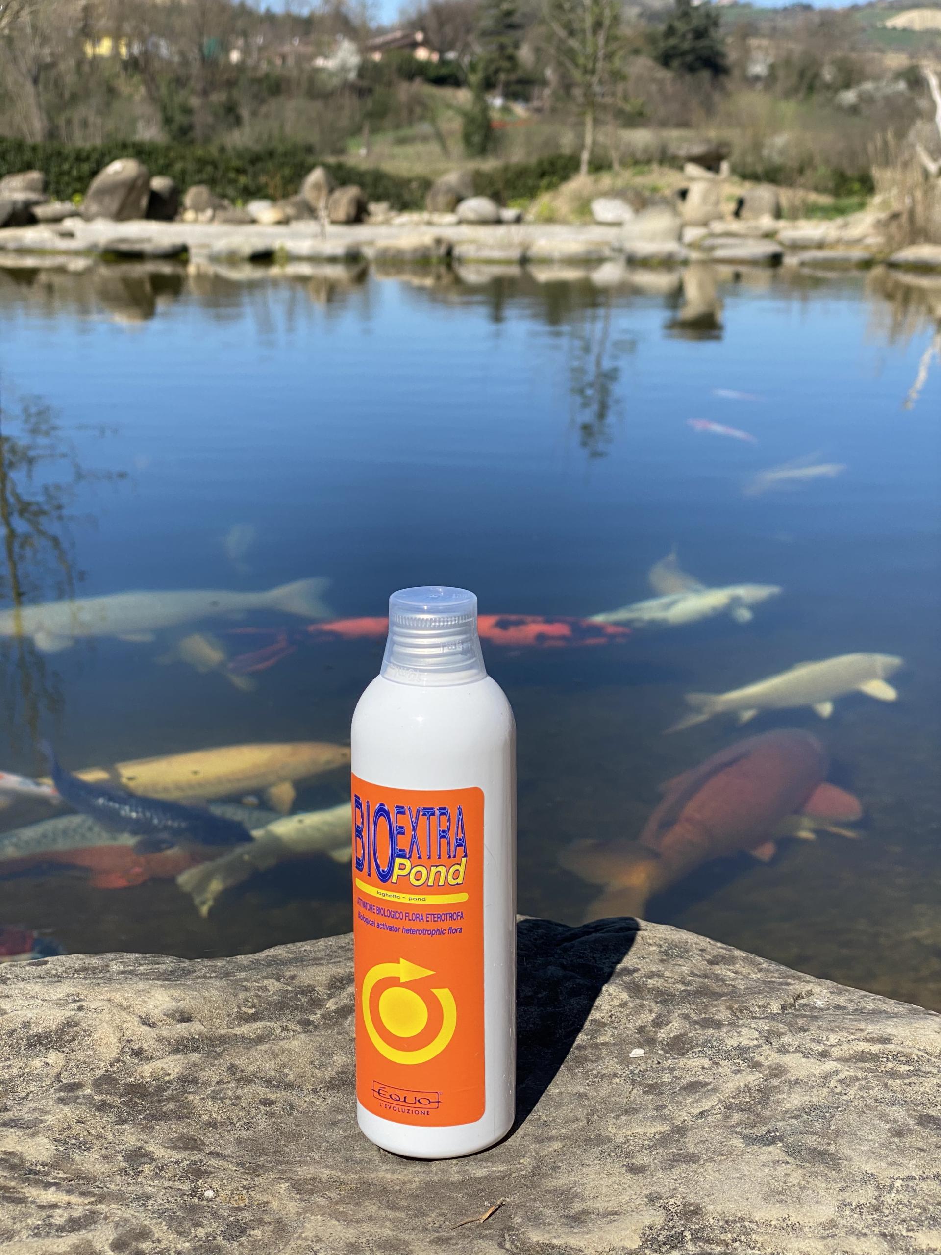 batteri depuranti  Èquo Bio Extra pond 250 ml